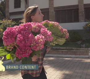 Brand Content, Jardinería – Husqvarna